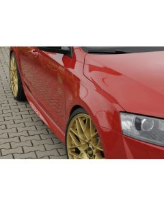 Rieger Tuning side skirt  00079014