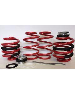 Height Adjustable Lowering Springs E21-GF-T6.1-2